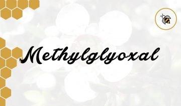 "Echten Manuka Honig kaufen – am besten ""Methylglyoxal zertifiziert"""